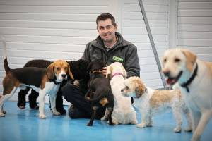 doggy day care centre in Trafford Park