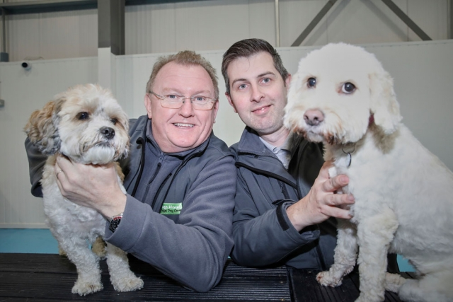 dog care Manchester