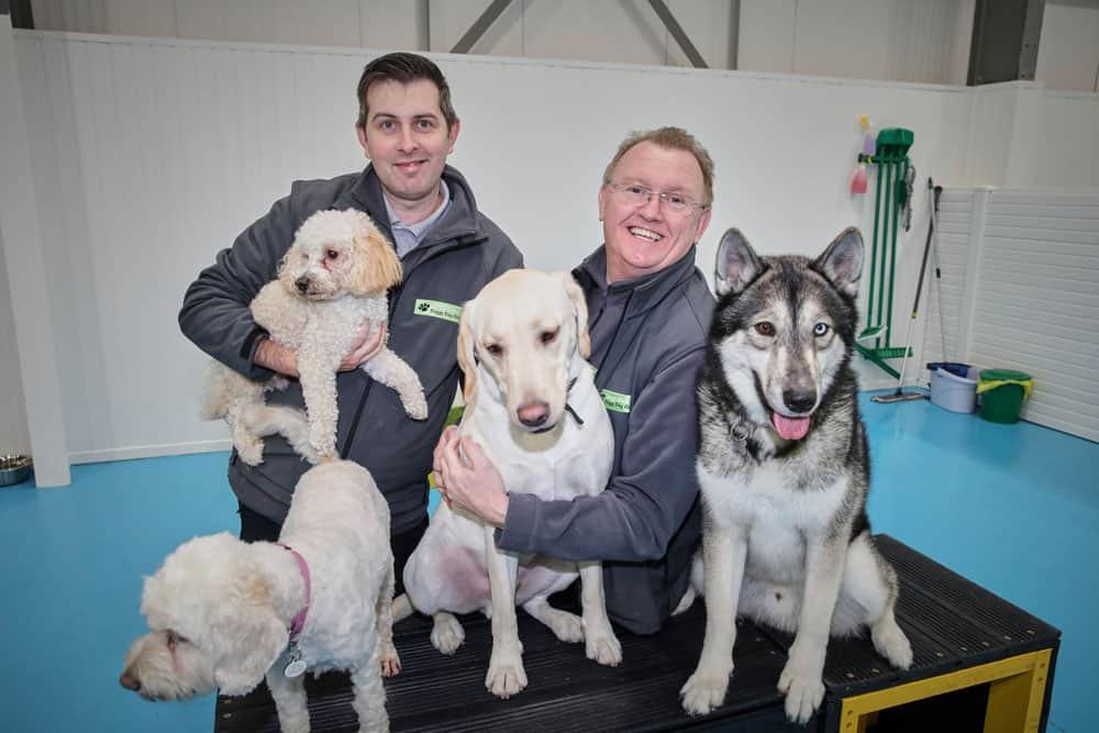 puppy daycare in Trafford