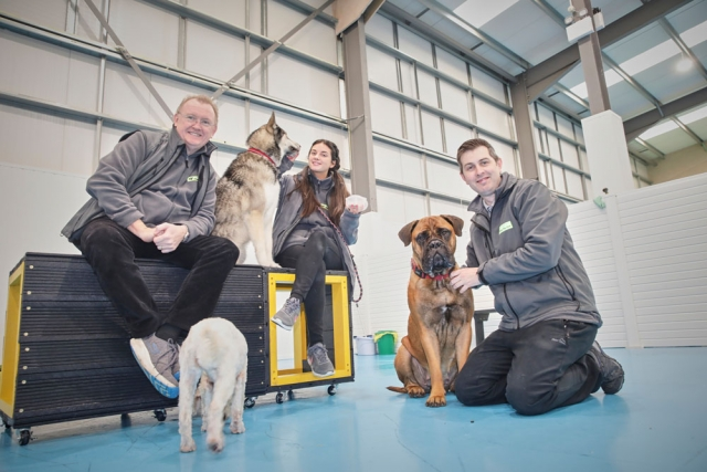 Dogs aloud - doggy daycare based in Manchester