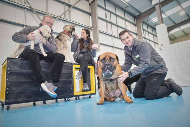 dog care near me in Manchester