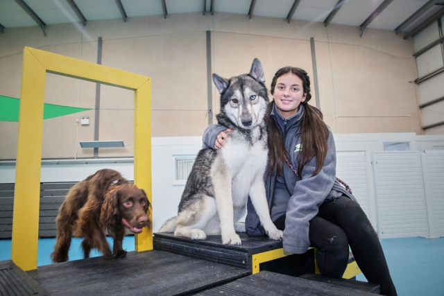 Amy with our dogs at dogs aloud