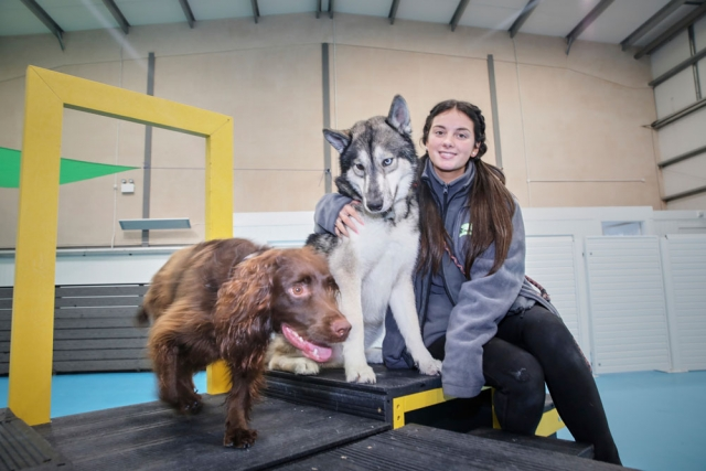 Amy with our dogs at dogs aloud Trafford