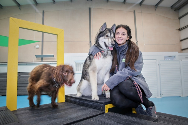 Amy with our dogs at dogs aloud Manchester