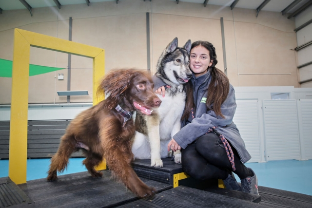 Amy with our dogs at dogs aloud Trafford Park
